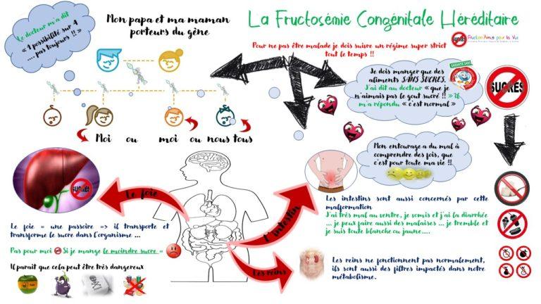 Mind map La fructosemie